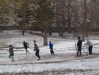 Central Park in New York - Fun in the snow