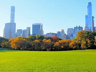 Central Park in New York - Sheep Meadow Autumn