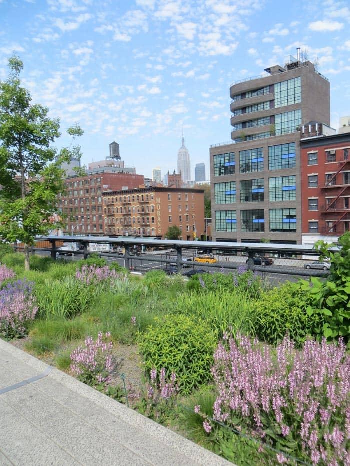 Parks in New York - High Line Park