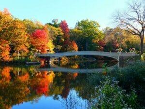 Central Park Movie Sites Walking Tour - Bow Bridge