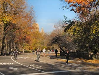 Renting a bike in New York - Central Park Autumn
