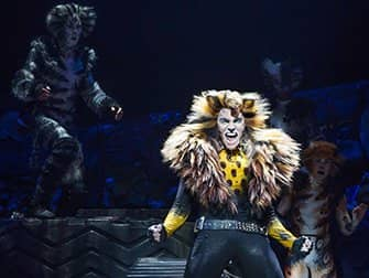 Cats on Broadway Tickets - Solo